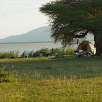 Safari Kenia Tansania Malawi Sambia Zimbabwe